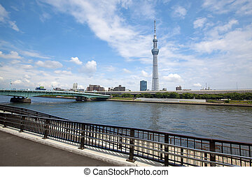Tokyo Skyline - View of Tokyo skyline from Sumida river