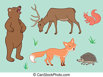 The forest animals - Set of animals from European forest