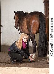 Girl brushes her pony - Girl is brushing the legs of her...
