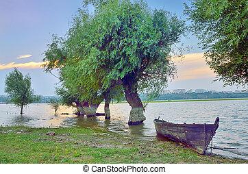 boat on danube river in summer time