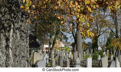 rural cemetery autumn - old rural cemetery memorial in...