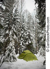 Winter Camping - A tent in the forest during winter