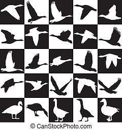 Black and white background with gee - illustration of geese...