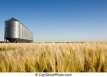 Prairie Harvest Landscape - Grain bins in the distance with...