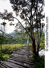 Hanging Bridge Suspension - A scary hanging bridge in a...
