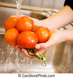 Washing Tomatoes - A detail image of washing tomatoes at...