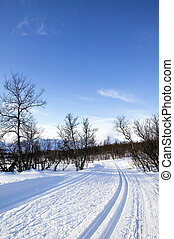 Cross Country Ski Trail - Cross country ski trails in the...