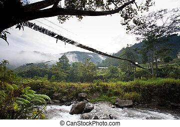 Hanging Bridge Suspension