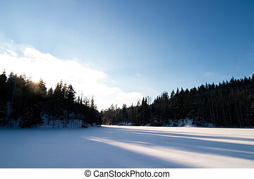 Frozen Lake Landscape - A frozen lake in the middle of...