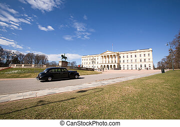 Oslo Palace - The Oslo Palace on a bright blue day waiting...