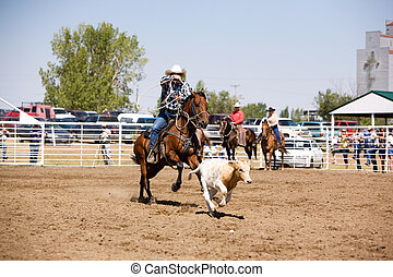 Calf Roping - A calf roping image for a local rodeo