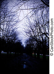 Spooky Alley - A dark spooky alley overshadowed with trees