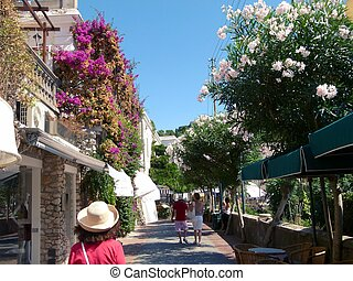 A Walk Along the Shops of Capri - This is the path along the...