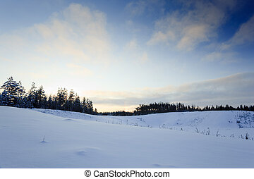 Winter landscape from finland with snow