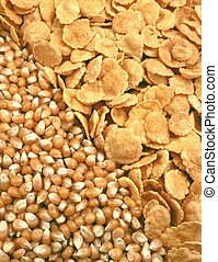 corn seeds and corn-flakes
