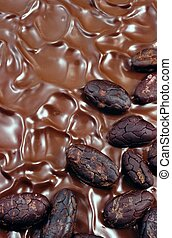 Chocolate icing with cocoa beans