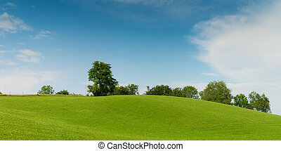 green meadow hill with trees on soft blue sky