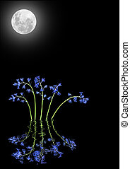 Moonlight and Bluebell Flowers - Bluebell flower abstract...