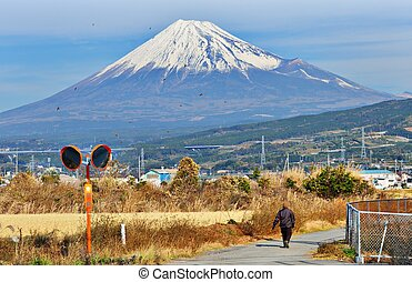 Fuji - Farmland below Mt. Fuji in Japan.