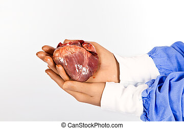 Doctor hold patient heart