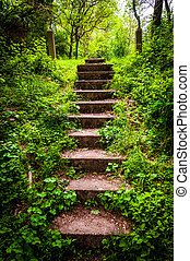 Old stairs and surrounding vegetation at Codorus State Park,...