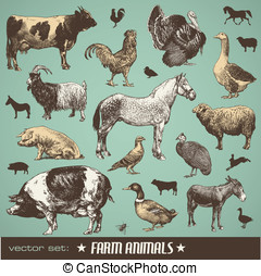 Farm animals - vector set: farm animals - various...