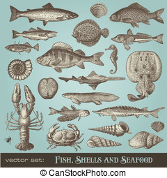 Fish, shells and seafood - vector set: fish, shells and...