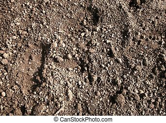 Flower bed garden soil close up.