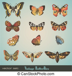 Vintage butterflies - vector set: detailed vintage...