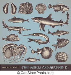 Fish, shells and seafood (set 2) - vector set: fish, shells...