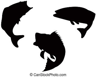 Bass silhouette - Illustration on bass fish