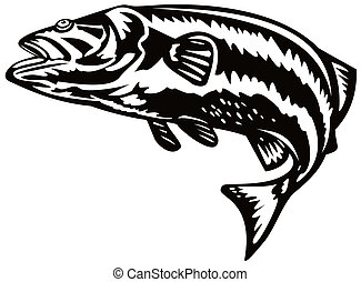 Sea bass jumping - Illustration on bass fish