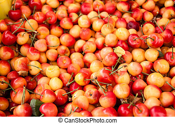 Rainier cherries - An abundance of Rainier cherries at the...