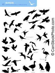Collection of 40 silhouettes - collection of 40 silhouettes...