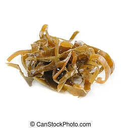 Kelp (Laminaria) Seaweed Isolated on White Background - Kelp...