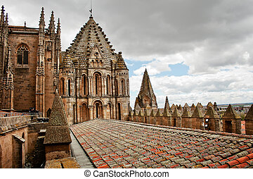 Old tile roof of ancient Cathedral in Salamanca, Spain