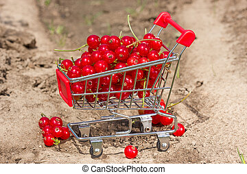 Red currant in a shopping cart