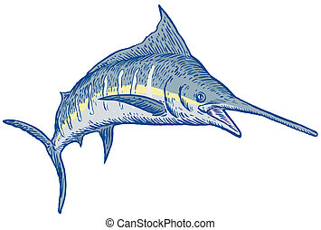 Blue Marlin - Illustration of a blue marlin
