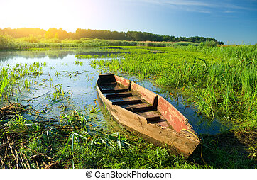 Boat in a high cane on the bank of lake