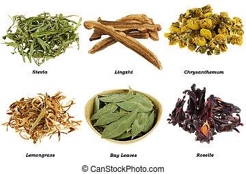 surtido, secado, herbario, té