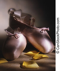 Ballet slippers and petals - Picture of Ballet slippers and...