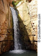 Ein Gedi Oasis - Israel - Waterfall in Ein Gedi oasis near...