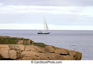 sailboat in the ocean