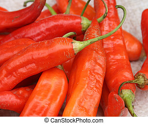 Red Peppers in Otavalo - Fresh, local red peppers for sale...
