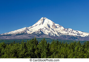 Majestic Mt Hood - Snow capped Mt Hood rising high above a...