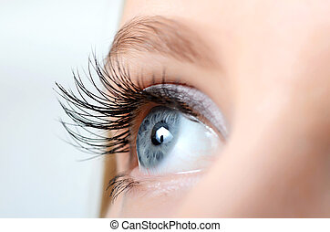 Female eye with long eyelashes close-up - Female eye with...