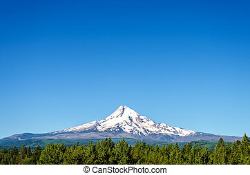Beautiful Mt. Hood