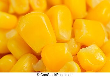 Canned Sweet Corn Kernels Close-Up - A close-up of canned...