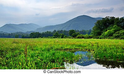 Cades Cove in the Smoky Mountains - Field at Caves Cove in...