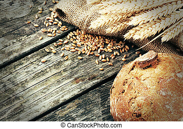 Fresh loaf of bread and wheat